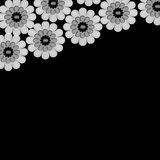 Black and white floral background Stock Image