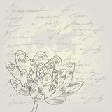 Black and white floral background Stock Photos