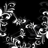 Black and white floral background Royalty Free Stock Images