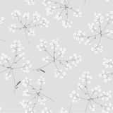 Black and white floral  background. Seamless black and white floral  background Stock Images