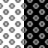 Black and white floral seamless ornaments. Set of backgrounds Stock Image