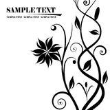 Black and white floral banners. Abstract background, beautiful vector illustration Stock Photo