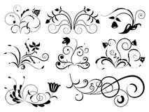 Black and white floral design Stock Photography