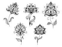 Black and white floral motifs in persian style Royalty Free Stock Image