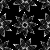 Black and white floral ornament. Seamless pattern Royalty Free Stock Photography