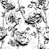 Black and White Floral Seamless Background Royalty Free Stock Photo