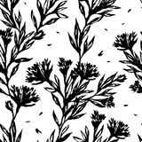 Black and white floral seamless pattern. Stock Photo