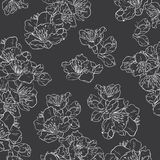 Black and white floral seamless pattern. Cherry blossom, sakura seamless pattern. Floral vector background royalty free illustration