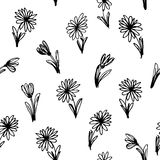 Black and white floral seamless pattern. Vector Royalty Free Stock Images