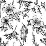 Black and white floral seamless pattern Stock Photos