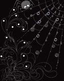 Black-white floral spider. Black and white spider and web illustration Stock Photos