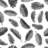 Black and white floral textile seamless pattern. EPS10 vector illustration. Tropical banana and monstera leaves isolated on white. Background stock illustration