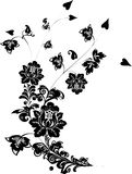 Black on white flower curl Royalty Free Stock Images