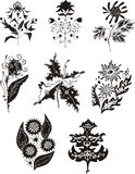 Black and white flower designs Royalty Free Stock Images