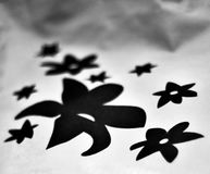 Black & white flower graphics printed on a cloth stock photograph. The beautiful black and white printed graphics flower shape isolated object unique stock Stock Image