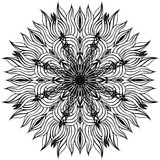 Black and white flower Stock Photography