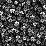 Black and White Flower Pattern Stock Photography