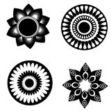 Black white flowers Royalty Free Stock Photos