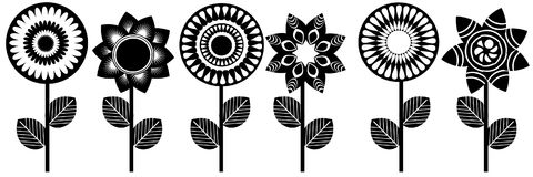 Black white flowers Royalty Free Stock Photo