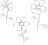 Black and White Flowers Illustrations. Black and white flowers, flower illustrations, flora, nature, plants, white background Royalty Free Stock Images