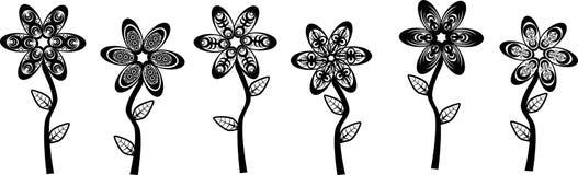 Black White Flowers Stock Images