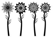 Black White Flowers Stock Photography