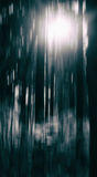 Black and white forest particle drop abstraction Stock Images