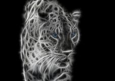 Free Black-white Fractal Wild Leopard With Blue Eyes Royalty Free Stock Photography - 140100447