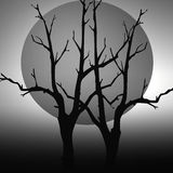 Black and White Full Moon Stock Images