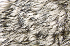 Black and white fur Stock Photography
