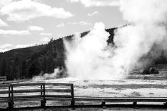 Black and White Geyser. This was a geyser in the same area as Old Faithful in Yellowstone National Park. I loved the look of the boardwalk with the geyser in the Stock Photography