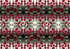 Black with white gradient background from garlands of red roses Stock Photo