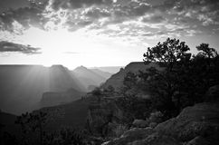 Black and White Grand Canyon Sunrise Royalty Free Stock Photos