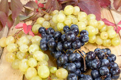 Black and white grapes Stock Images