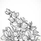 Black and white graphic line drawing of flowers Royalty Free Stock Images