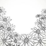 Black and white graphic line drawing of lush wildflowers Royalty Free Stock Photos