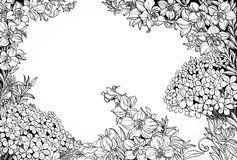 Black and white graphic line drawing of magical wildflowers Royalty Free Stock Images