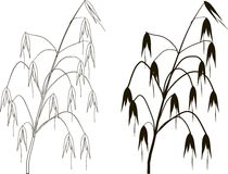 Black and white graphic silhouette and outline of oats Stock Photography