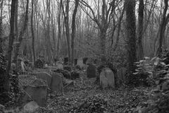Black and white graves Highgate Cemetery. Graves covered in ivy in the East Cemetery in Highgate Cemetery in London. The East cemetery is set in 9 acres of land Stock Photos