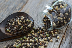 Black ,white, green, brown peppercorn Stock Images