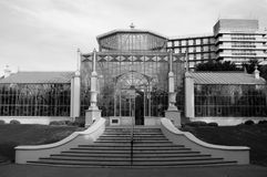 Black & White Greenhouse. The greenhouse in the Adelaide Botanic Gardens (black and white Stock Photography