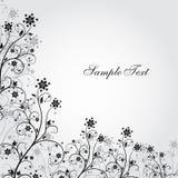 Black and white grunge flower Stock Image
