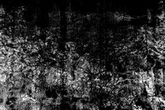 Black and white grunge texture background, use for overlay on im Stock Image