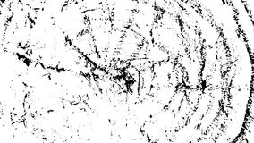 Grunge texture vector background  White and black. Black and White grunge texture vector  Background of cracks, lines, stains, scuffs, chips Royalty Free Stock Photo