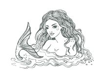 Black and white hand drawn mermaid, on white background, linen vector illustration.  Stock Images