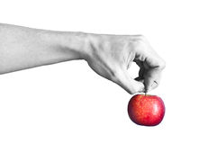 A black and white hand holding a red apple. Isolated on white background Stock Photo