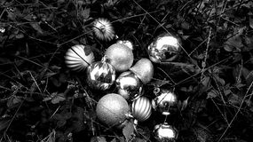 Black and White Holiday royalty free stock images