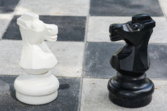Black and white horse from big chess game Stock Images