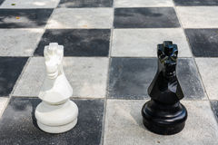 Black and white horse from big chess game Stock Photo
