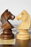 Black and white horse chess Stock Images